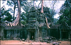 die überwucherten Ruinen von Angkor, Kambodscha